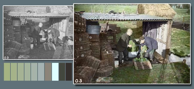 Adding Colour To Black And White Photos - Restoration